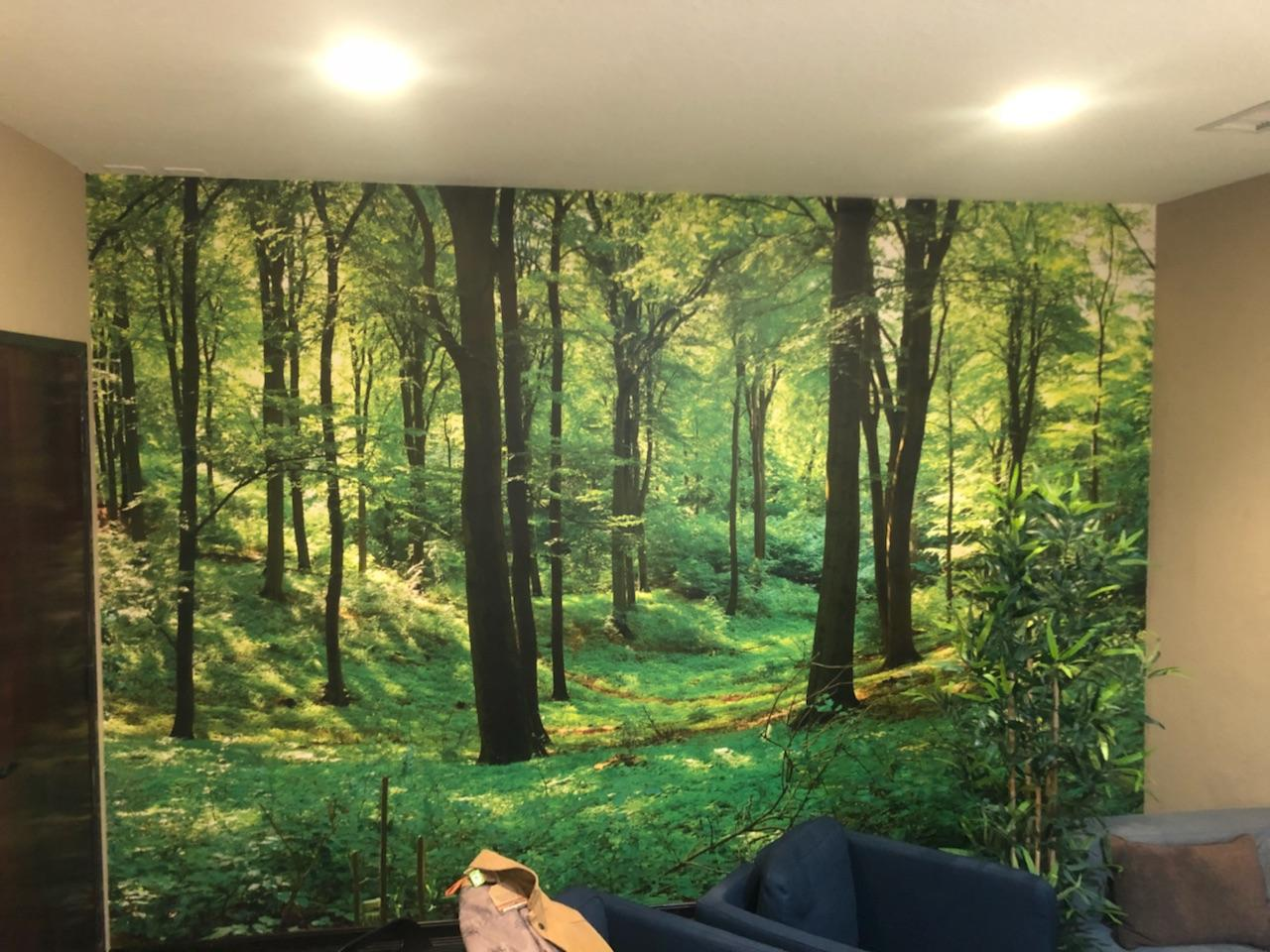 Photo Mural Wallcovering & Installation